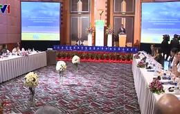 Việt Nam và Tanzania thúc đẩy hợp tác kinh tế