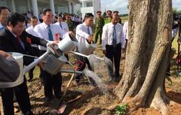 Quyết định thành lập trường Đại học Kiên Giang
