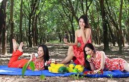 Hoa khôi áo dài Việt Nam - Liveshow 4: Chờ đón sự bứt phá