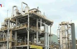 Xuất khẩu dầu thô, nhiều thùng dầu đã bị lỗ