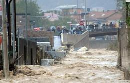 Italy: Nhiều khu vực nông nghiệp chìm trong nước lũ