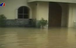 Indonesia: Hàng nghìn người phải sơ tán do lũ lụt