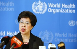 Tổ chức Y tế Thế giới nhóm họp về dịch Ebola