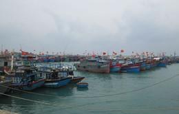 Các tỉnh miền Trung kêu gọi tàu thuyền tránh trú bão Hagupit