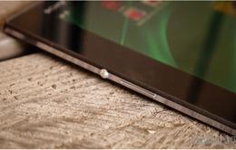 2015: Sony ra mắt máy tính bảng màn hình 12,9 inch?