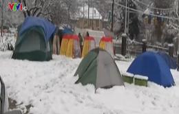 Phụ huynh Mỹ dựng lều đợi xin học cho con
