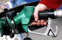 Ấn Độ cắt giảm trợ giá nhiên liệu