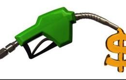 Xe hơi của bạn có thật sự tiết kiệm nhiên liệu?