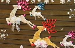 Ấn tượng hình ảnh ấm áp và rộn rã mùa Noel