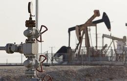 OPEC duy trì sản lượng dầu mỏ