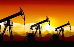 IEA hạ dự báo nhu cầu dầu mỏ thế giới trong năm 2015