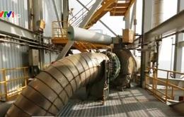 Giá dầu giảm, nhiều DN Mỹ ngừng khai thác