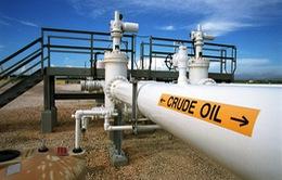 Nhu cầu dầu thô của OPEC trong năm 2015 sụt giảm mạnh