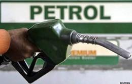 Giá xăng dầu trong nước giảm một nửa so với thế giới
