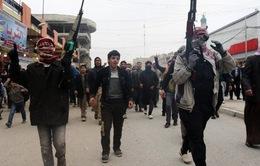 """""""Mỹ không đơn độc trong cuộc chiến chống IS"""""""