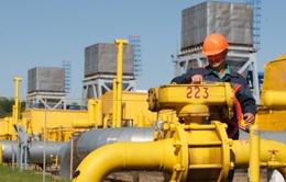 """Nga huỷ bỏ dự án vận chuyển khí đốt """"Dòng chảy phương Nam"""""""