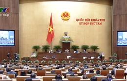 Quốc hội thông qua hai dự thảo luật Tổ chức Quốc hội và Bảo hiểm xã hội