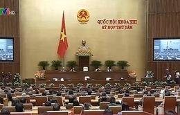 Dấu ấn kỳ họp thứ 8, Quốc hội khóa XIII