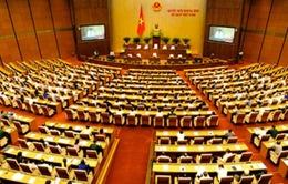 Quốc hội thảo luận dự thảo luật bầu cử đại biểu Quốc hội và Hội đồng nhân dân