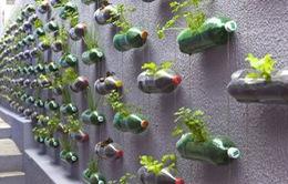 Việt Nam cần những thành phố phát triển bền vững
