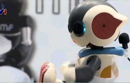 Tuần lễ Robot tại Nhật Bản: Robot phục vụ nhu cầu chăm sóc sức khỏe