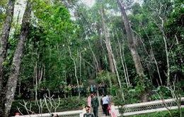 THTT Lễ công bố di tích quốc gia đặc biệt khu rừng Trần Hưng Đạo (20h10, VTV1)