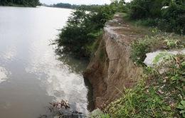 Quảng Nam: Nhức nhối tình trạng sạt lở ven sông
