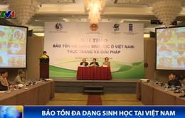 Giải pháp bảo tồn đa dạng sinh học tại Việt Nam?