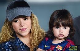 Shakira thích con trai và muốn sinh 20 bé