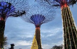 Ngắm Singapore mùa giáng sinh