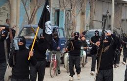 QH Thổ Nhĩ Kỳ phê chuẩn hành động quân sự chống IS