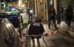 Pháp: Lái xe tâm thần làm bị thương 11 người đi bộ