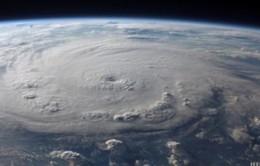 Tầng ozone đang có dấu hiệu phục hồi