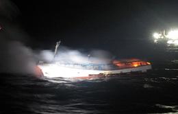 Khó khăn trong tìm kiếm thuyền viên Việt Nam mất tích ở Hàn Quốc