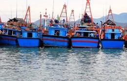 Gói tín dụng 10.000 tỷ VND chưa đến tay ngư dân