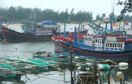 Thành lập 3 đoàn kiểm tra công tác chuẩn bị ứng phó bão Hagupit