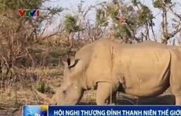 Học sinh Việt Nam tham gia hoạt động bảo vệ tê giác