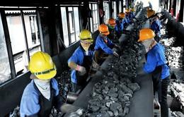 Nghịch lý xuất nhập khẩu than