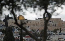 Palestine hối thúc LHQ can thiệp chấm dứt bạo lực ở Jerusalem