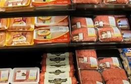 Mỹ: Thu hồi thịt bò xay do nhiễm độc E.coli
