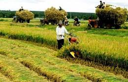 Lời giải cho câu chuyện lạm thu ở nông thôn