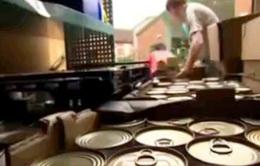 Nước Anh lãng phí 4,3 triệu tấn thực phẩm thừa mỗi năm