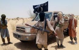 Ít nhất 100 phần tử khủng bố bị quân đội Algeria tiêu diệt trong năm 2014