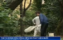 Nhật Bản đóng cửa công viên vì... muỗi