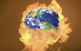 Năm 2014 là năm nóng nhất trong lịch sử