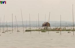 Mặt hồ Trị An bị chiếm dụng: Đơn vị quản lý lực bất tòng tâm