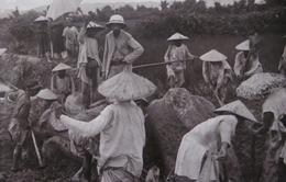 Việt Nam đầu thế kỉ XX qua tư liệu ảnh của các học giả Pháp