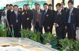 Khai mạc triển lãm Nông nghiệp Quốc tế lần thứ 14