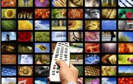 24 kênh truyền hình-phát thanh qua Internet cho Việt kiều
