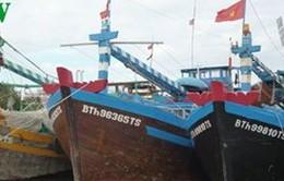 Quảng Ngãi cấm các phương tiện tàu thuyền ra khơi